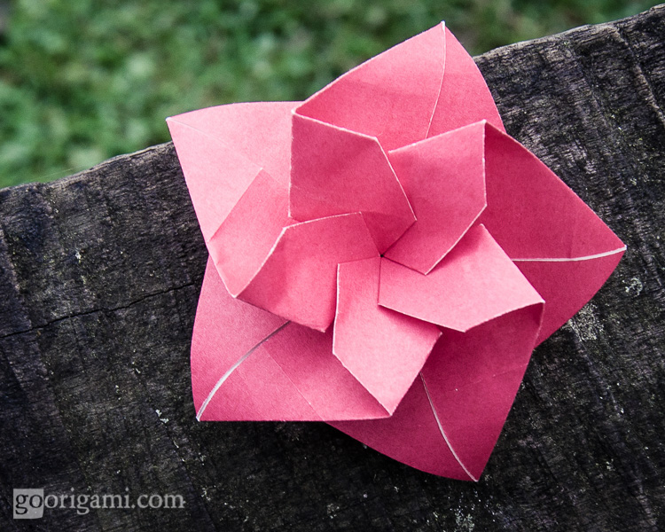 Origami flowers and plants gallery go origami two faced flower mightylinksfo