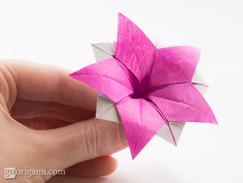 Origami flowers and plants gallery go origami origami flower ipomeia rubra mightylinksfo
