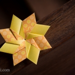 Modular Origami Star/Flower