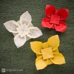 Origami Flower - Papoula da Praia