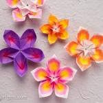 Modular Origami Flowers