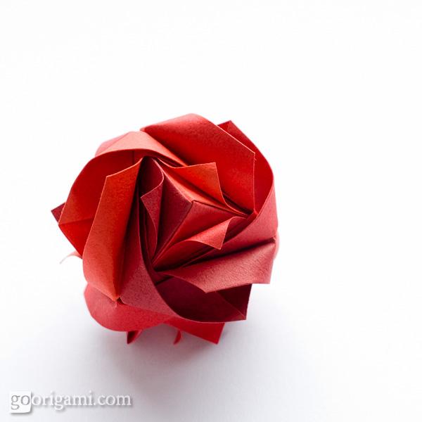 модуль оригами роза красная фото всех видов