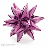 Corolla Star