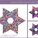 Origami Hexa Star