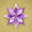 Enrica Dray Origami Star